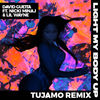 DAVID GUETTA - LIGHT MY BODY UP (TUJAMO)